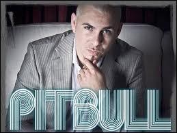 Quelle chanson Pitbull a-t-il chantée ?