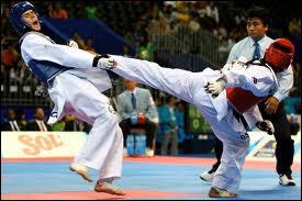 Quel art martial est originaire de Corée ?
