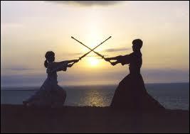 Cela signifie ''art du sabre'' . L'origine de cette pratique remonte aux samouraïs.