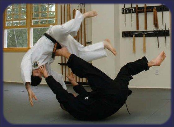 Quel art martial (budo) donna naissance aux deux autres ?