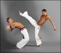 Créée par les esclaves, la ''capoeira'' est plus proche de la danse que du sport de combat. Dans quel pays est-elle le plus pratiquée ?