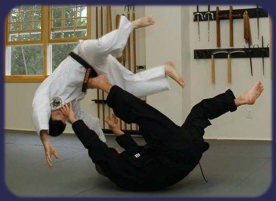 Arts martiaux et sports de combat