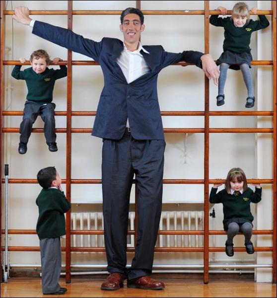 Il a fait monter la taille de l'être humain vers des hauteurs insoupçonnées !
