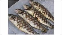 Quel est ce poisson, spécialité de Gironde, que l'on peut déguster grillé sur des sarments de vigne ?