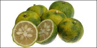 Connaissez-vous cet agrume d'origine asiatique ?