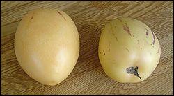 Quel est ce fruit dont le goût ressemble à celui du concombre ?