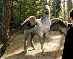 Et lui, c'est mon hippogriffe qui s'appelle :