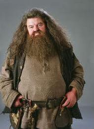 Un ami de Harry Potter.