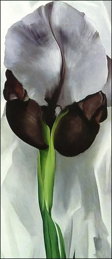 Iris noir, 1933 par une peintre moderniste américaine majeure, célèbre pour ses gros plans de fleurs traités à la limite de l'abstraction. (1887-1986)