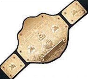 A qui appartient cette ceinture?