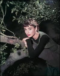 Dans ce grand film, Audrey Hepburn est la fille d'un chauffeur de maître, et observe depuis son arbre les splendides réceptions qui se tiennent dans la propriété. Quel est ce film ?