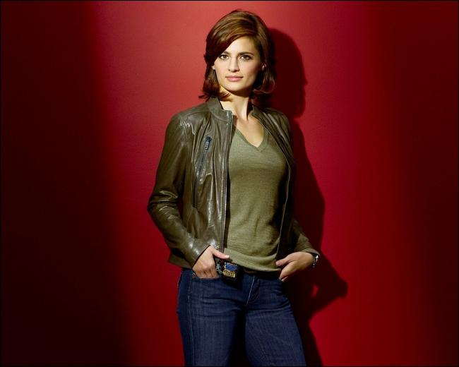 Dans quelle autre série policiére, excepté Castle, a joué cette actrice ?
