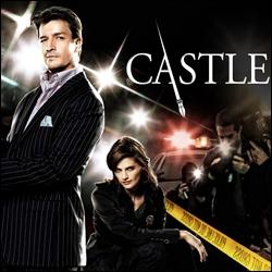 Quel est son partenaire dans la série Castle ?