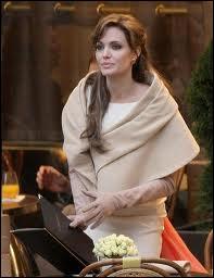 Sans doute le film aux costumes les plus ratés, dans lequel le jeu coincé de Angelina Jolie vaut bien le jeu... très lointain de Johnny Depp. Il s'agit du film ?