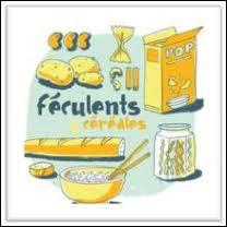 Il est recommandé de manger des féculents avant une compétition d'endurance parce que ce sont des aliments riches en. .