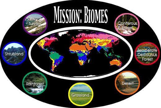 Les principaux biomes terrestres de la planète