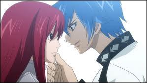 Dans Fairy tail  qui est ce couple ?