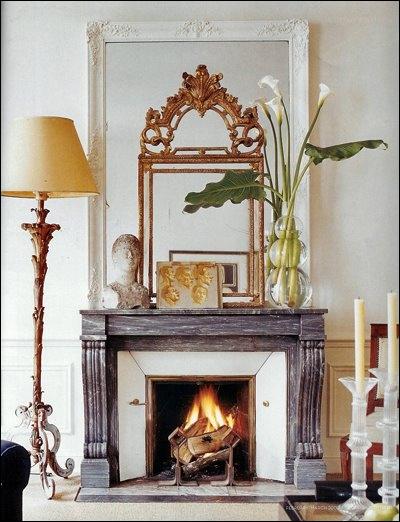 Posées sur la cheminée dans un vase transparent, quelques-unes de ces fleurs très stylées composent une ambiance calme. Ce sont des ?