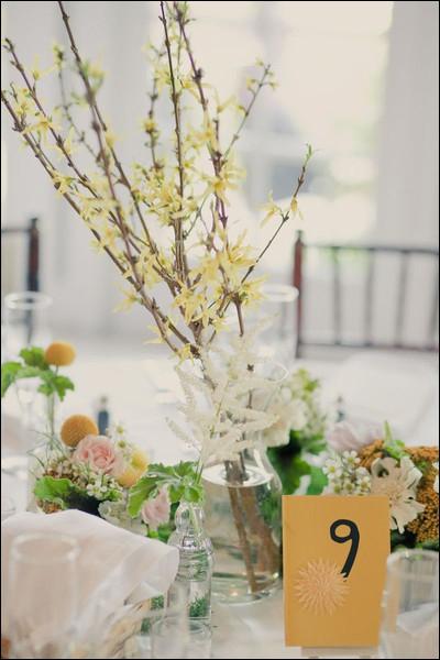 Très facile à composer au printemps, voici parmi les premières fleurs à s'épanouir tôt dans la saison, avec leur belle couleur jaune. Ce sont des branches de ?