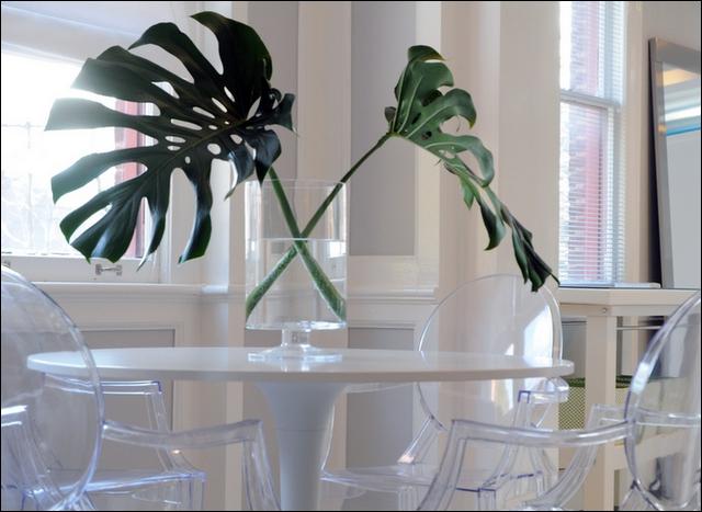 Un décor peut aussi se réaliser à partir de feuilles... Quelles sont ces grandes feuilles découpées ?