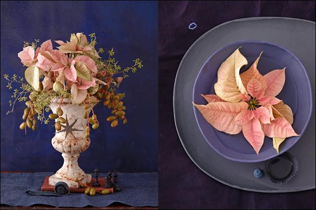 Un bouquet aérien et très original composé de cette plante de la saison froide qui est nommée ?