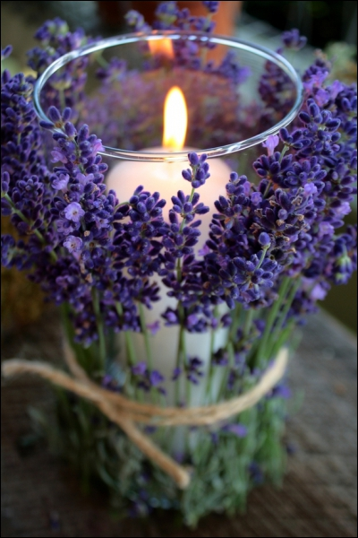 Voici une façon originale de présenter ces fleurs, en les nouant autour du vase qui contient une bougie. C'est ?