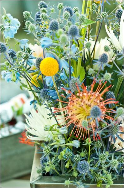 Dans cette composition aérienne et champêtre, quelles sont les fleurs à boutons bleus-verts ?