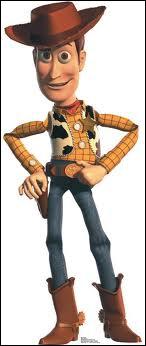Quel est le nom de ce cowboy héros du premier long-métrage d'animation réalisé entièrement par les studios Pixar ?