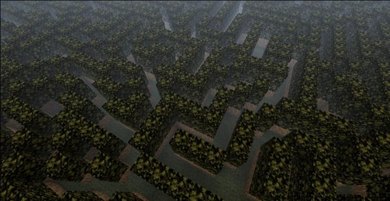 """""""Les gens, voyez-vous, changent dans le labyrinthe""""."""