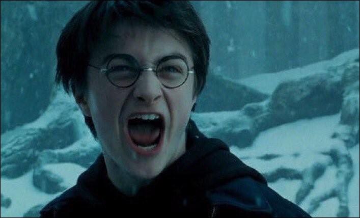 """""""Calme toi Potter... Calme toi... Il ne faut pas que tu restes là""""."""