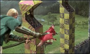 Durant le match de Quidditch contre Setpentard, où se trouve le Vif d'or la 1 ère fois que Harry l'aperçoit ?