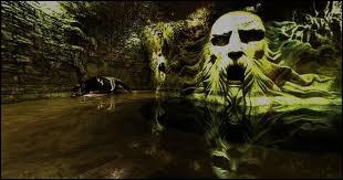 Qui est enfermé dans la Chambre des secrets ?
