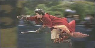Que se lancent Harry, Ron, Fred et George lorsqu'ils s'entraînent au Quidditch ( sur la colline) ?