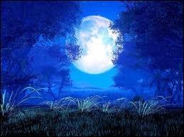 Bien qu'elle soit ronde, la Lune n'est pas considérée comme une planète. Savez-vous pourquoi ?