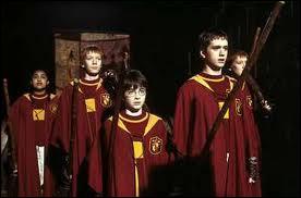 Qui a fait partie de l'équipe de quidditch ?
