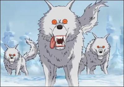 Grâce à qui Bon Clay (Mr. 2) et Luffy n'ont-ils pas servi de repas pour les loups ?