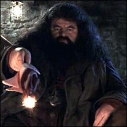 Comment s'appelle la mère de Rubeus Hagrid ?