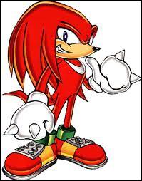 Qui est ami et rival à la fois avec Sonic ?