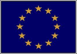 La nouvelle carte bleue européenne vient d'être mise en oeuvre en Europe depuis quelques mois. De quoi s'agit-il ?