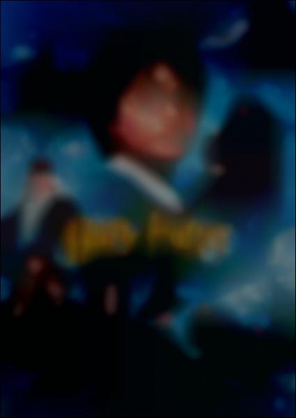 Que peut-on voir sur la couverture du DVD Harry Potter à l'Ecole des Sorciers ?