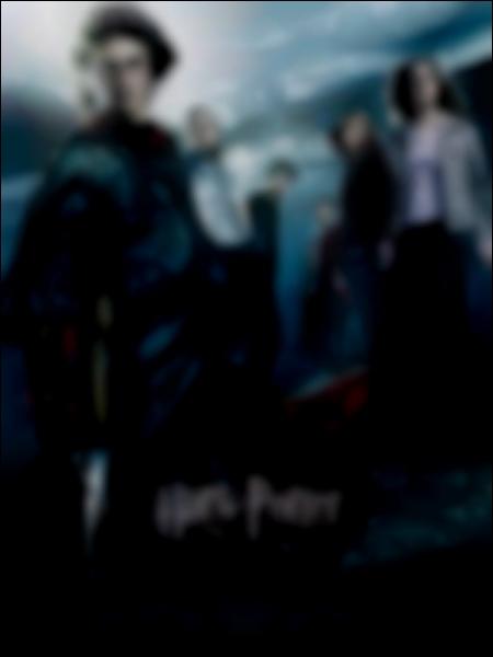 Que peut-on voir sur la couverture du DVD Harry Potter et la Coupe de Feu ?