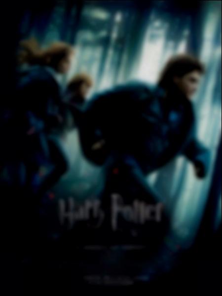 Que peut-on voir sur la couverture du DVD Harry Potter et les Reliques de la Mort, Partie 1 ?