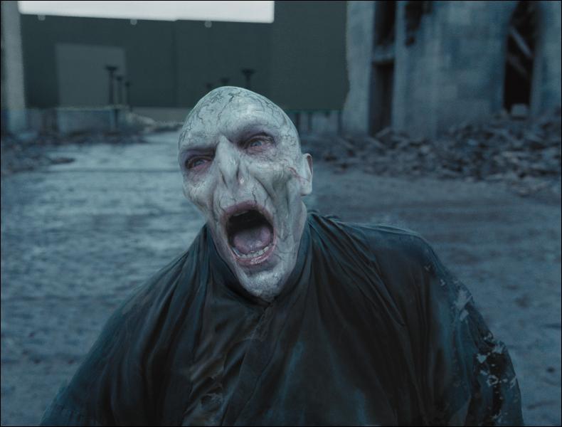 Qui a tué le célèbre mage noir, Voldemort ?