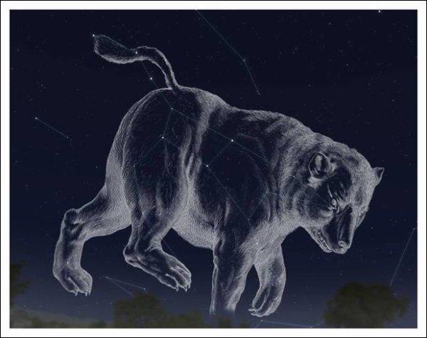 Qui sont à l'origine les constellations de la Grande Ours et de la Petite Ourse ?