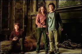 Dans quel film voit-on Hermione avec Harry et Ron dans cette scène ?