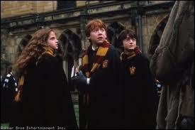Dans quel film voit-on Hermione en compagnie de Ron et Harry, ainsi ?