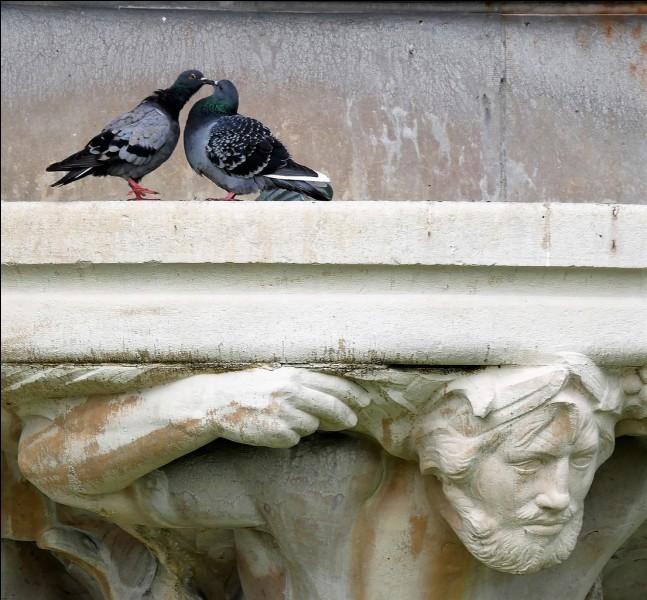 """Quand ce n'est pas Nana Mouskouri qui chante """"Coucouroucoucou"""" ce sont deux oiseaux. Quel est le titre exact de cette fable de La Fontaine ?"""