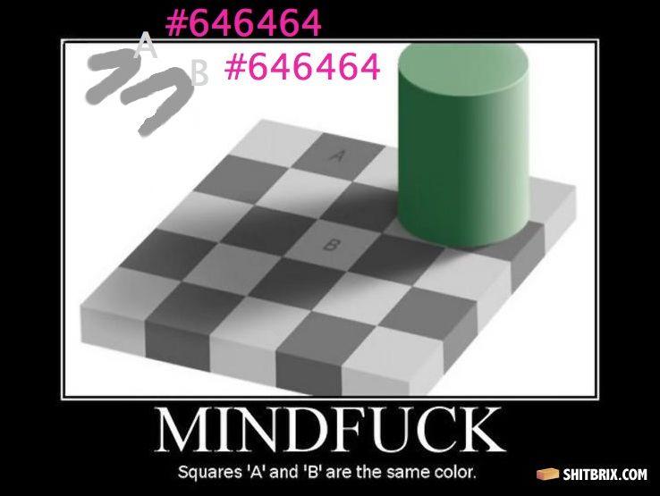 Qu'est-ce que vous voyez ?