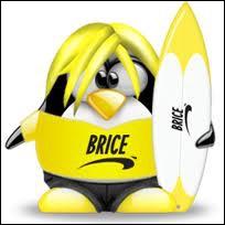 Si vous ne trouvez pas, vous serez  cassé  ! Qui est ce surfeur ?