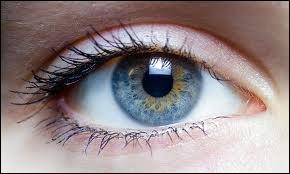 Un individu en conditions normales passe, devant un écran de télévision pour un film d'une durée de 2h30, 8 minutes les yeux fermés si l'on fait le total des clignements de paupières.